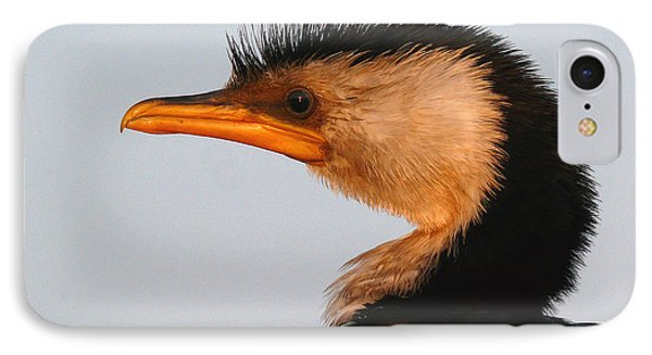 Profile Of A Young Cormorant IPhone Case