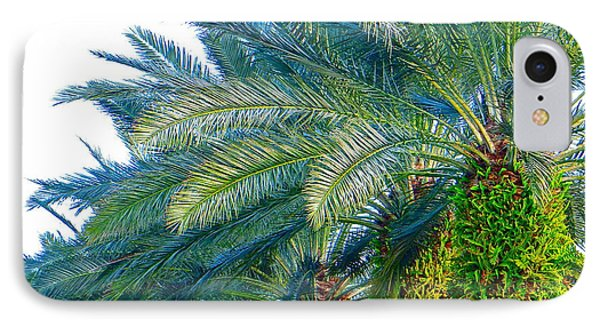 Progression Of Palms IPhone Case by Joy Hardee