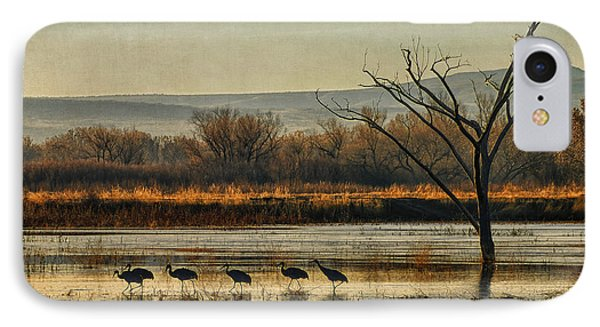 IPhone Case featuring the photograph Promenade Of The Cranes by Priscilla Burgers