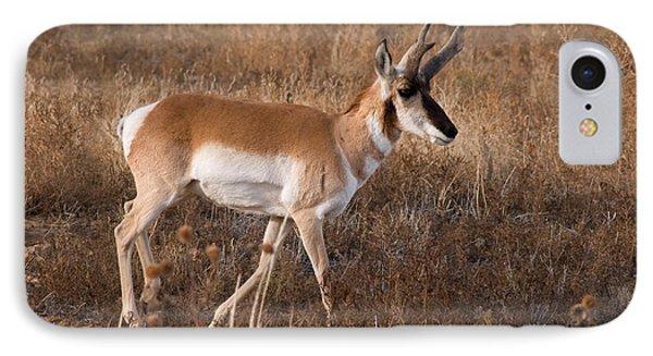Pronghorn Antelope 2 Phone Case by Vivian Christopher