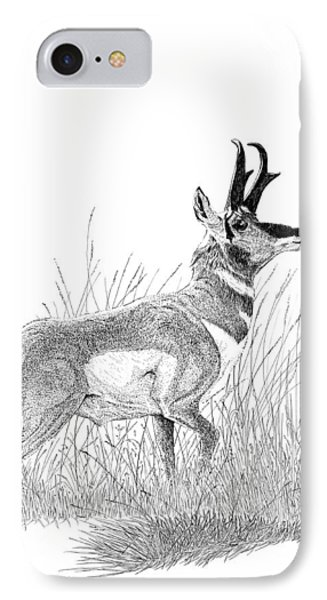 Pronghorn IPhone Case by Carl Genovese