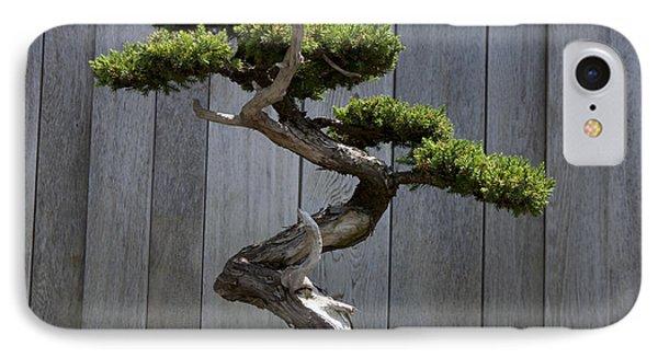 Prostrate Juniper Bonsai Tree IPhone Case by Jason O Watson