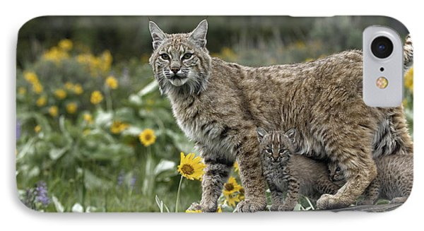 Protection IPhone Case by Wildlife Fine Art
