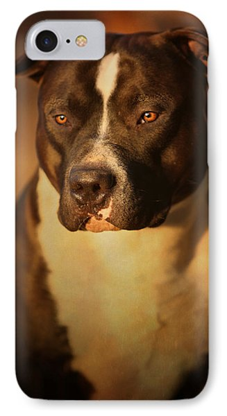 Proud Pit Bull IPhone Case by Larry Marshall