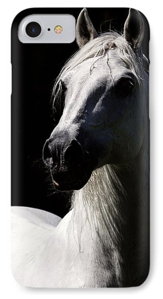 Proud Stallion IPhone Case