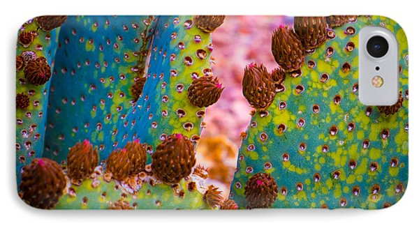 IPhone Case featuring the photograph Psychedelic Cactus by Glenn DiPaola
