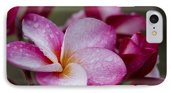 Pua Melia Floral Celebration Phone Case by Sharon Mau