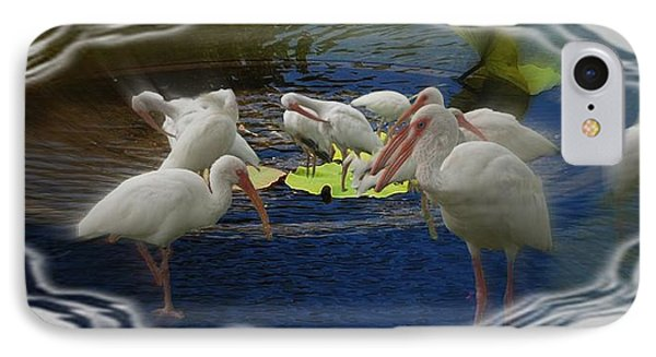 IPhone Case featuring the photograph Puddle Of Ibis by Irma BACKELANT GALLERIES