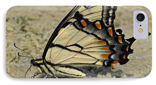 Puddling Eastern Tiger Swallowtail Butterfly IPhone Case by Lara Ellis