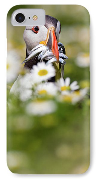 Puffin & Daisies IPhone 7 Case