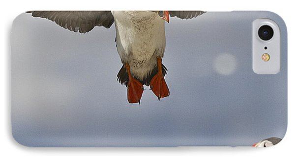Puffin Coming Home IPhone Case by Heiko Koehrer-Wagner