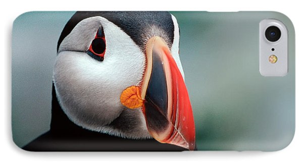 IPhone Case featuring the photograph Puffin Head Shot by Jerry Fornarotto