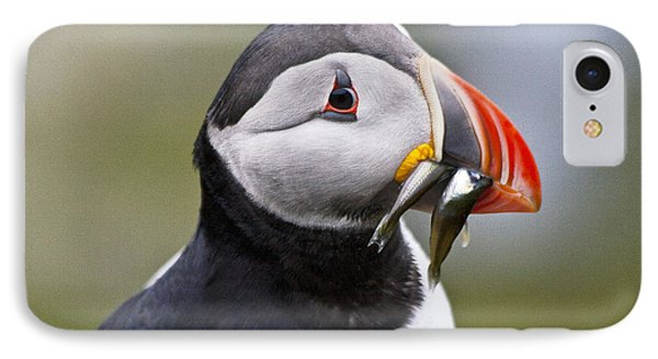 Puffin Phone Case by Heiko Koehrer-Wagner