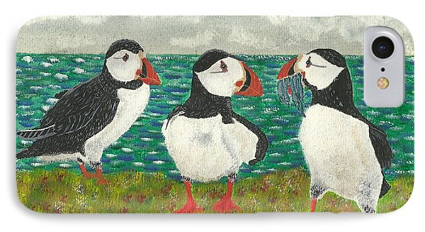 Puffin Island IPhone Case by John Williams