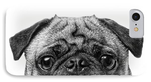 Pug Dog Square Format IPhone Case by Edward Fielding