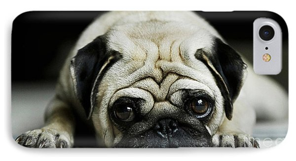 Pug Puppy  IPhone Case by Marvin Blaine