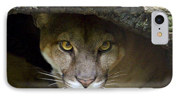 Puma IPhone Case by Bob Hislop