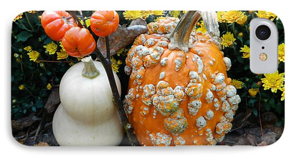 Pumpkin And Squash IPhone Case
