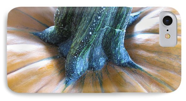 IPhone Case featuring the photograph Pumpkin by Beth Vincent