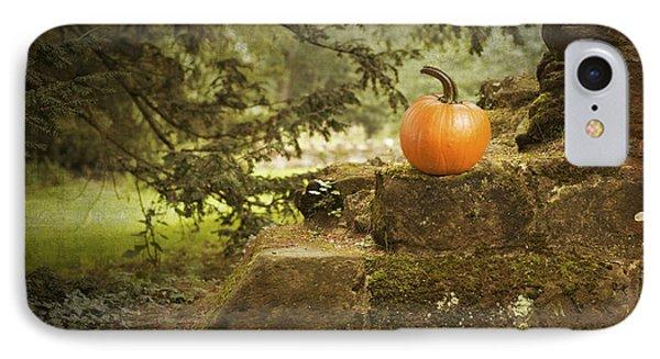 Pumpkin IPhone Case by Amanda Elwell