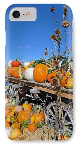 Pumpkin Farm IPhone Case by Minnie Lippiatt