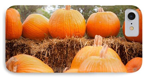 Pumpkin Fest Phone Case by Sonja Quintero