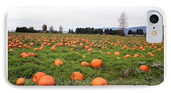 Pumpkin Field IPhone Case by Joyce Gebauer