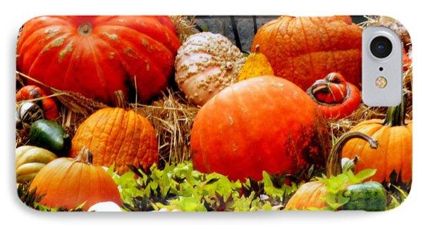 Pumpkin Harvest Phone Case by Karen Wiles
