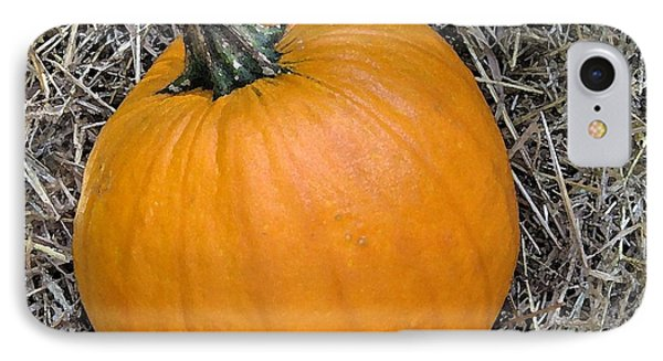 Pumpkin In The Hay IPhone Case by Patricia E Sundik