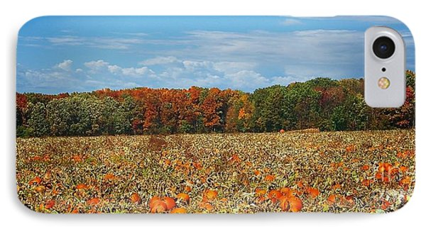 Pumpkin Patch - Panorama IPhone Case by Gena Weiser
