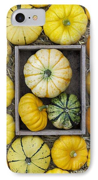 Pumpkin Pattern Phone Case by Tim Gainey