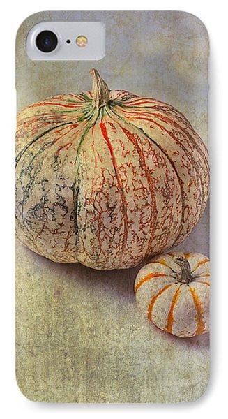 Pumpkin Textures IPhone Case