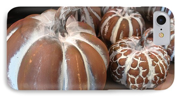 Pumpkins And Gourds Fall Autumn Brown White Pumpkins - Colors Of Autumn IPhone Case by Kathy Fornal
