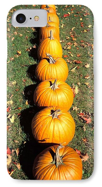 Pumpkins In A Row Phone Case by Anonymous