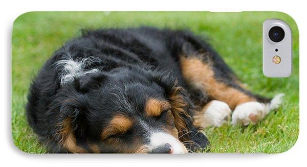 Puppy Asleep With Garden Daisy Phone Case by Natalie Kinnear
