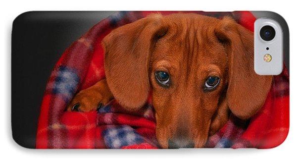 Puppy Love Phone Case by Susan Candelario