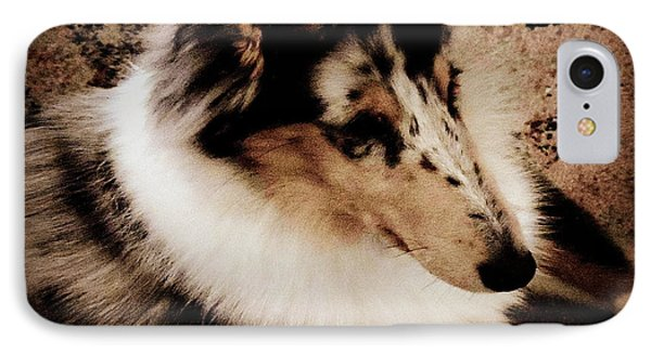 Puppy On Film IPhone Case