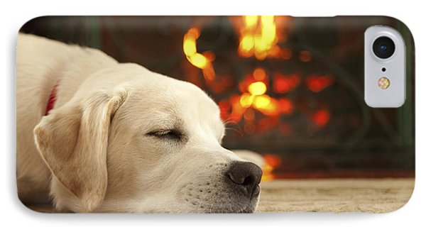 Puppy Sleeping By The Fireplace Phone Case by Diane Diederich