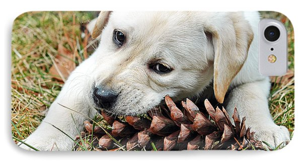 Puppy With Pine Cone Phone Case by Lisa Phillips