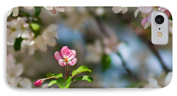 Pure Beauty - Featured 3 Phone Case by Alexander Senin