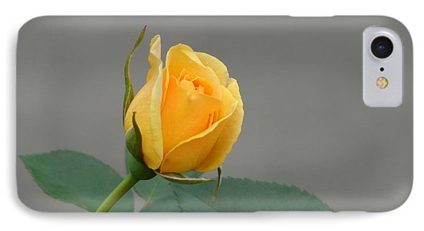 IPhone Case featuring the photograph Pure Gold by Lew Davis