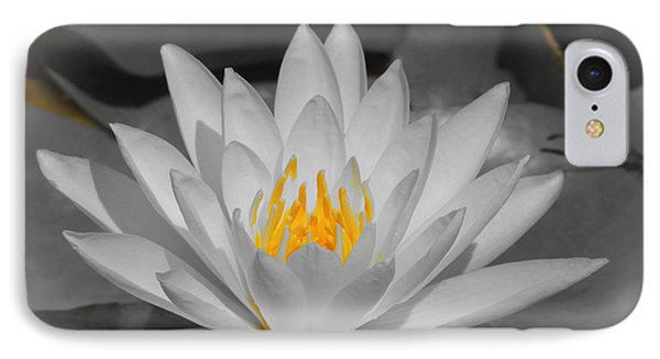IPhone Case featuring the photograph Pure by Teresa Schomig