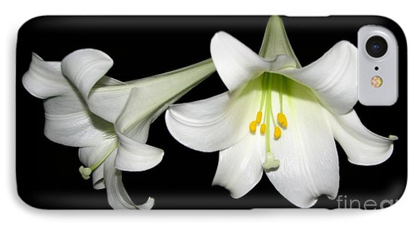 Pure White Easter Lilies IPhone Case by Rose Santuci-Sofranko