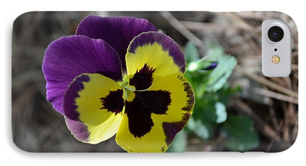 IPhone Case featuring the photograph Purple And Yellow Pansy by Tara Potts