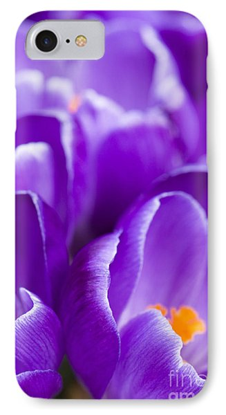 Purple Phone Case by Anne Gilbert