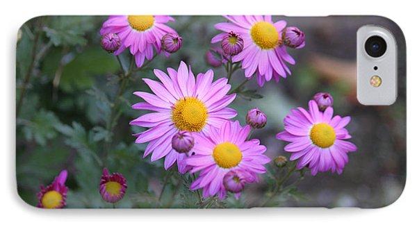 Purple Asters Phone Case by Lena Auxier