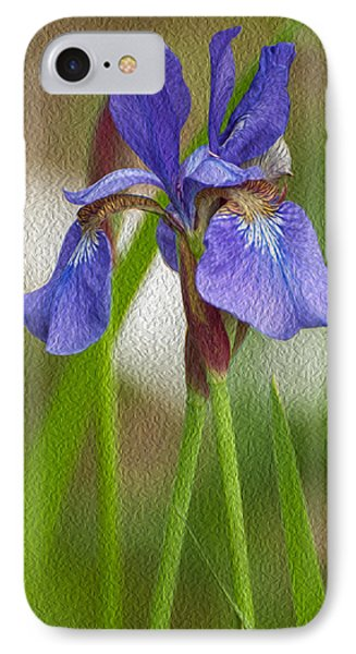 Purple Bearded Iris Oil IPhone Case by Brenda Jacobs