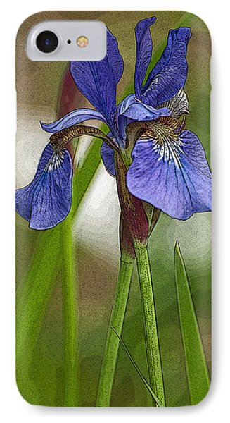 Purple Bearded Iris Watercolor With Pen IPhone Case by Brenda Jacobs