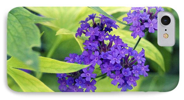 IPhone Case featuring the photograph Purple Bunch  by Haleh Mahbod