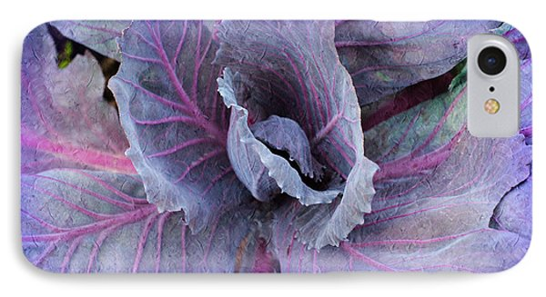Purple Cabbage - Vegetable - Garden IPhone Case by Andee Design